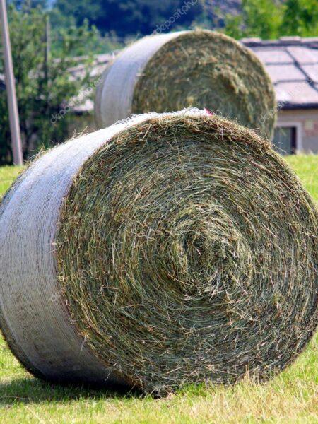 Применима для упаковки сена, зеленой массы, соломы или иной сушеной кормовой культуры