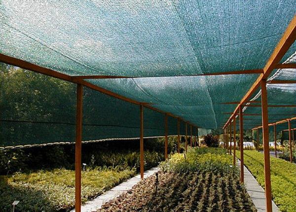 сетка для укрытия парников • сетка для защиты от птиц, сильных дождей и града