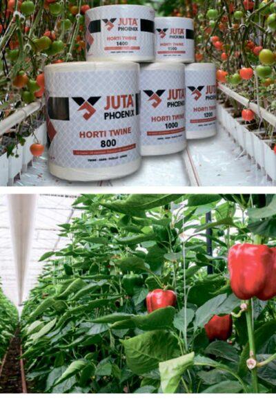 ШПАГАТ премиум-класса - проверенный годами качественный ассортимент для производителей помидоров, перца и огурцов.